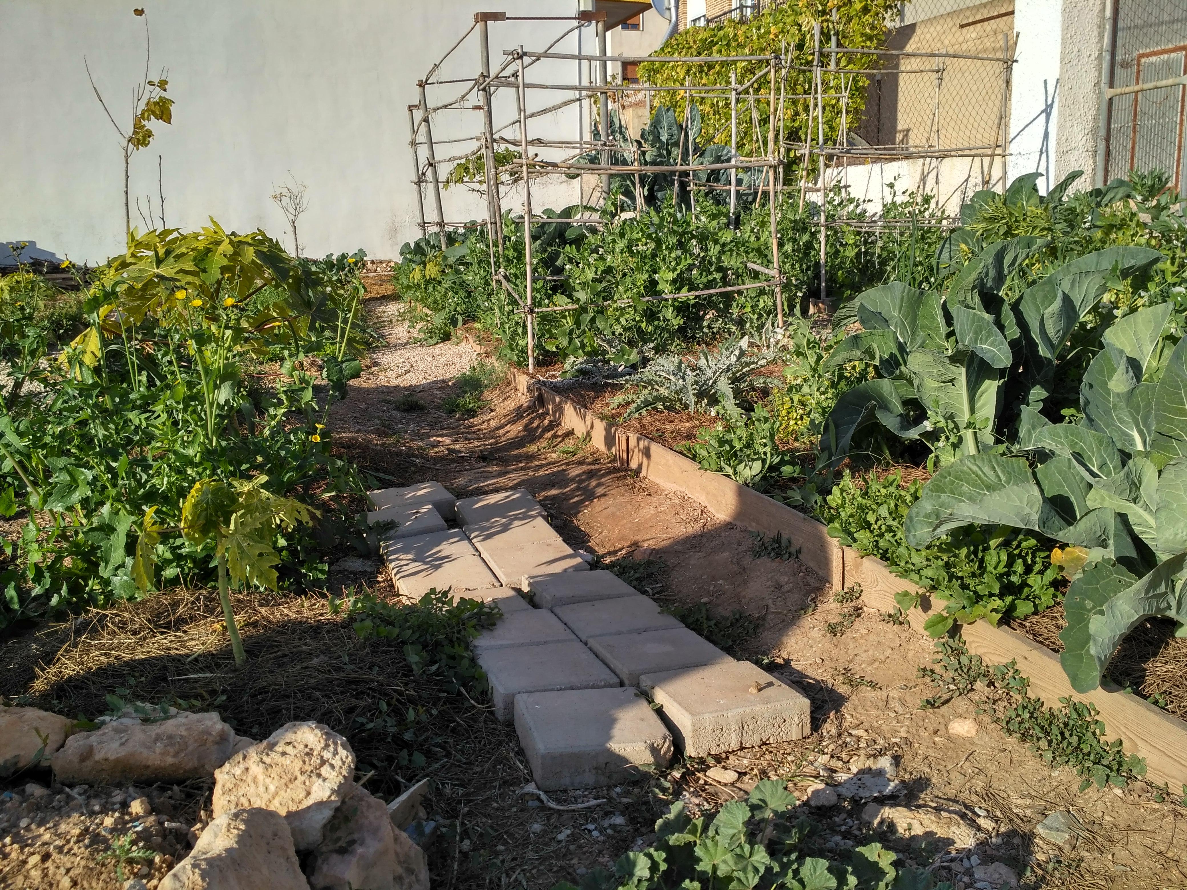 Vegetarian & permaculture 04