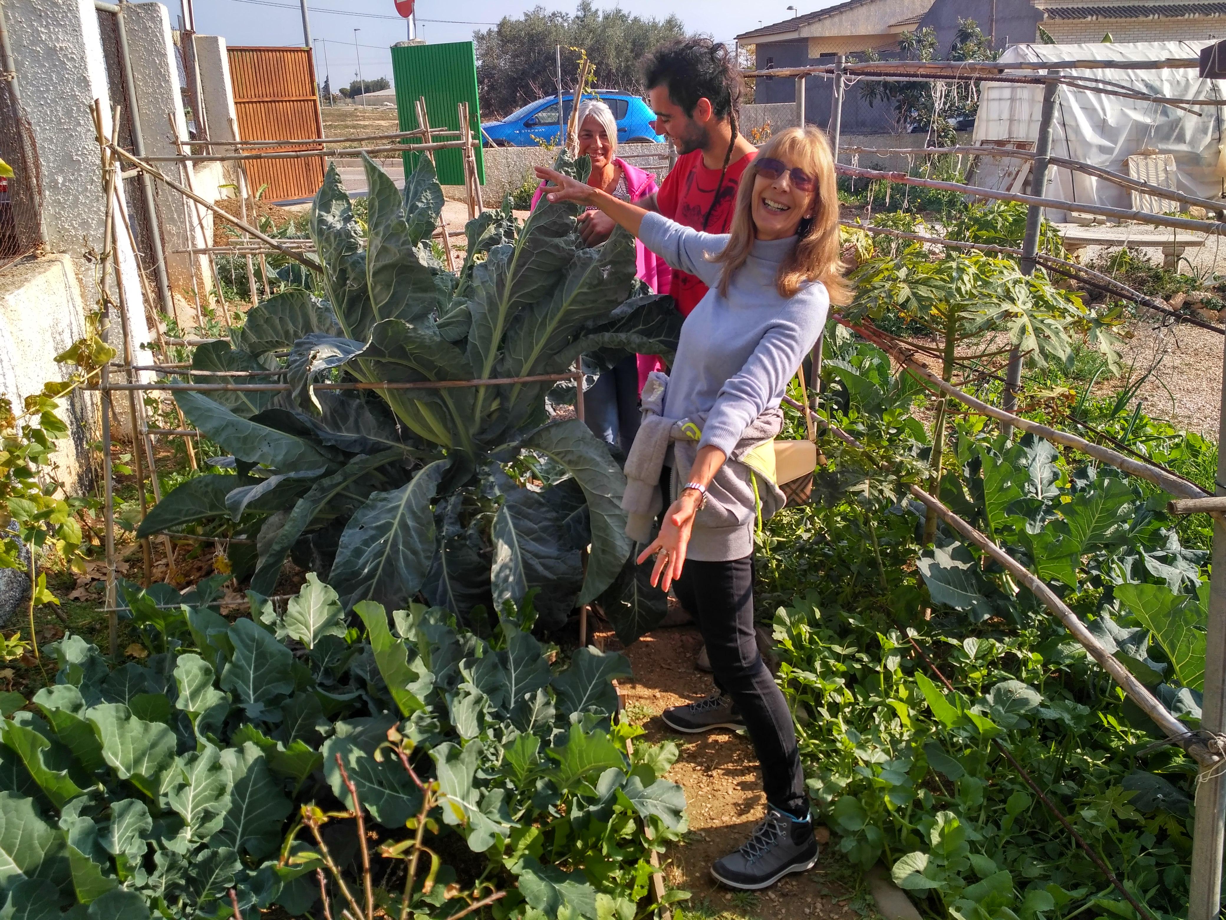 Vegetarian & permaculture 11