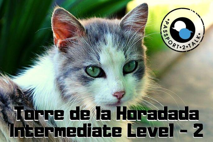 Learn Spanish Lessons Intermediate Torre de la Horadada 2