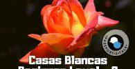 Spanish Course Beginner Casas Blancas Murcia 2