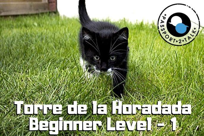 Learn Spanish Lessons Beginner Torre de la Horadada 0