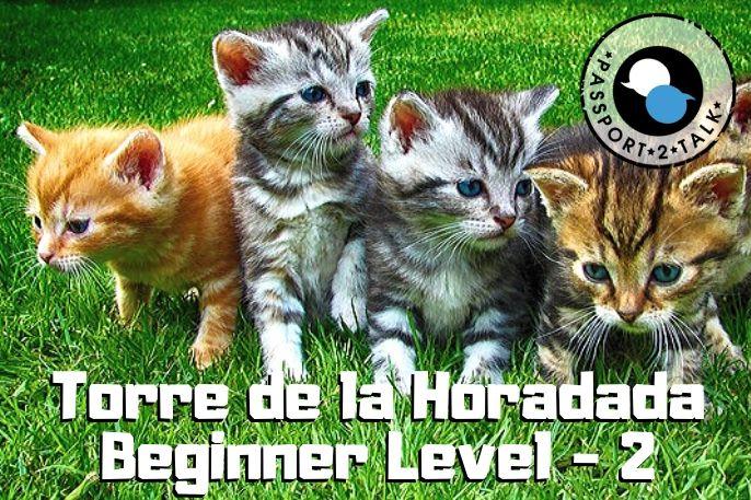 Learn Spanish Lessons Beginner Torre de la Horadada 2